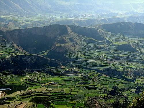 Valle del Colca por morrissey