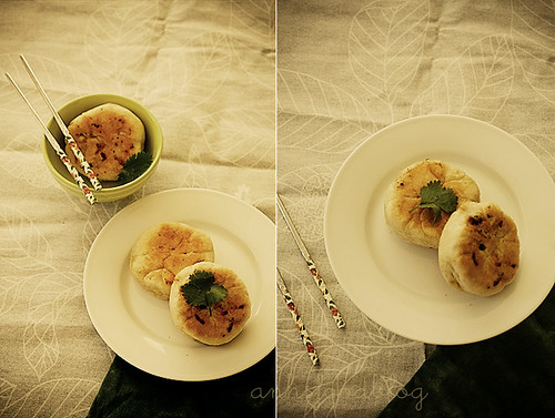 "pan-fried savoury ""sticky"" dumplings"