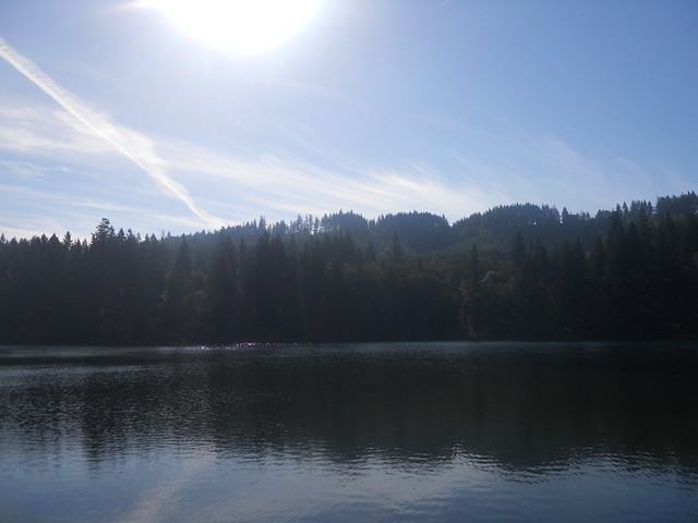 fall2010 144