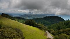 slopes of mount tam (foggydave) Tags: sanfrancisco northerncalifornia marincounty tamalpais mounttam