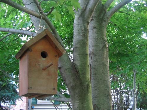 Mollie's Birdhouse