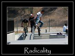 Radicality