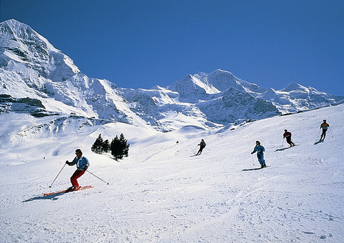 Gently sloping piste in Grindelwald