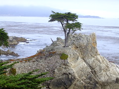 Cypress Point (Guido_62) Tags: california beach golf bay monterey pebble spanish spyglass