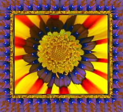 New-Age Framing, with naturally occurring elements (rajahdajah) Tags: floral design pattern echoes framing damncool handmadeframes imagespecificframing newageframing oneofakindframes