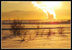 Golden Moment - Sunset in Denver, Colorado, USA (Batikart) Tags: travel schnee trees winter sunset vacation usa sun mountain snow mountains nature weather silhouette yellow clouds america canon geotagg
