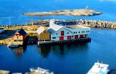 Miniature wharfs (larigan.) Tags: harbor miniature harbour northsea havn ona wharfs tiltshift blueribbonwinner tiltshift12 fakeeffect mywinners larigan phamilton