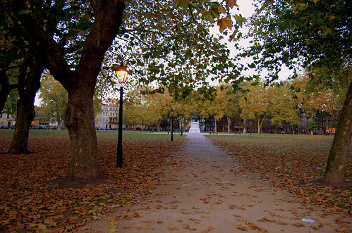 A Light In Queen Square