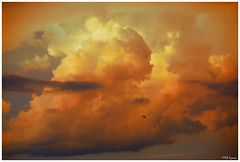 just a cloud (Magda'70) Tags: light sunset sky usa cloud storm clouds america evening us nikon texas irving dfw d200 2007 endoftheday abigfave aplusphoto zymon