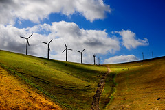 spring on the Altamont Pass ((nz)dave) Tags: california ca blue sky usa white color colour green texture windmill grass clouds america landscape outdoors us nikon scenery energy published power wind farm sold hill tan pass scenic electricity takenwhiledriving d200 generation alternative gettyimages renewable supply altamont greenenergy sigma30mmf14exdchsm nikond200 i500 interestingness08 explore13jun07 takenonthei570mph