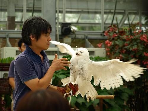 神戸花鳥園 (54)