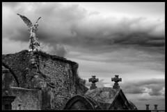 Ángel Castigador (DavidGorgojo) Tags: bw angel cementerio bn Ángel cantabria comillas llimona castigador naturewatcher