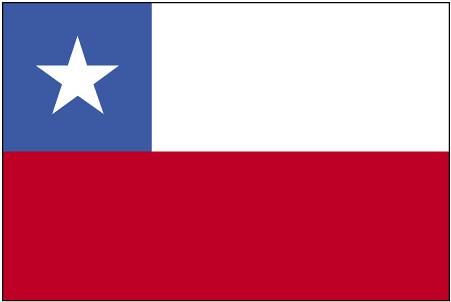 ci-lgflag