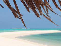 Under the Umbrella.... (stebox78) Tags: sea umbrella mare maldives palmbeach ombrello maldive