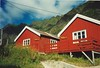 aa,lofoten (norvegia2005sara) Tags: house love norway norge sara north deep norwegen scanned lofoten aa norvegia norvegiasara