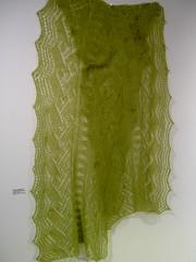 Jacqui's green shawl