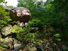 P1030520.jpg (airwaves1) Tags: 1000islands stlawrenceriver july282007 yeoisland