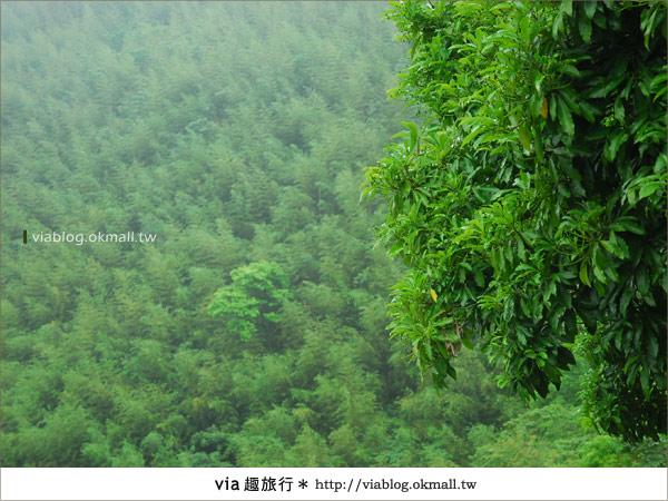 【新竹旅遊】拜訪尖石鄉之美~築茂緣、石上湯屋、泰雅風味餐
