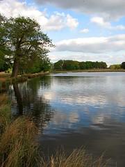Pen Ponds, Richmond Park (BEARTOMCAT (Bear)) Tags: richmond canonpowershots3is