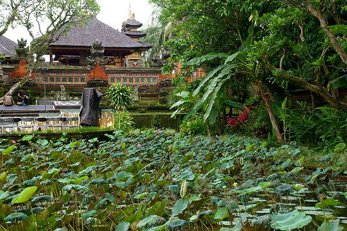 Cafe Lotus, Ubud.
