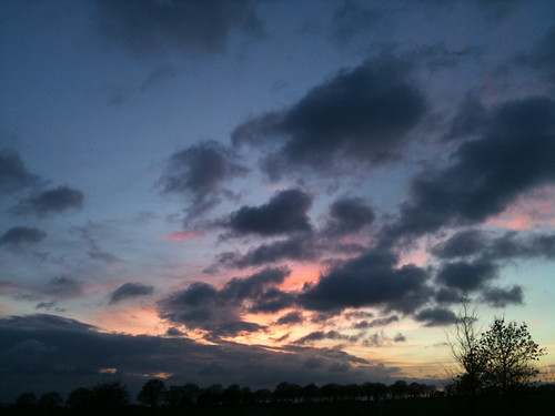 Shepherds Delight - Copyright R.Weal 2010