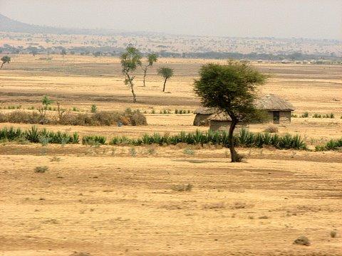 Masai houses