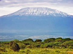 Mt Kilimanjaro 1