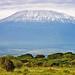 Kilimandjaro_1
