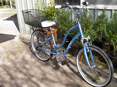 My new Electra Townie