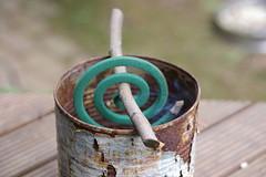 空き缶で蚊取り線香