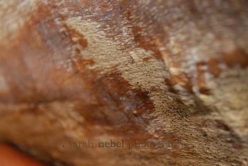 . texture .