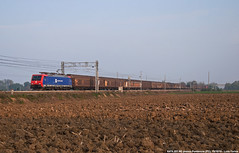 E474 201 NC (Luca Farina) Tags: railroad train country siemens rail railway db campagna bahn treno freighttrain ferrovia trenomerci chiasso nikond60 castelguelfo eurosprinter pontenure e474 dbschenker es64 nordcargo es64f4 e474201 e474nc milanopiacenzabologna