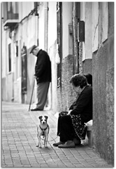 Daily life (Antonio Carrillo (Ancalop)) Tags: life street city bw espaa dog white black art blanco canon calle spain europe dof bokeh negro ciudad daily perro murcia vida ao santo 70200mm caravaca caravacadelacruz jubilar canon70200usml ancalop diariaold