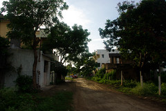 A deserted dirt road in Yavatmal, India (Lola Casamitjana) Tags: india dirtroad deserted chemin inde yavatmal dsert