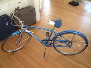Vintage Schwinn Speedster