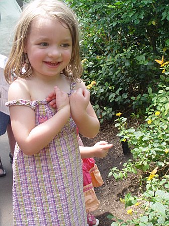 Peanut at the Butterfly Garden in the Bronx Zoo