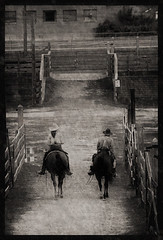 two [and two] (slight clutter) Tags: two horse southwest animal vertical cowboys texas pair teeth western iloveflickr fortworth southwestern stables riders oldwest stockyards slightclutter ranchers cowhands southwesternusa katyahorner slightclutterphotography