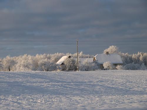 White Latvia 10