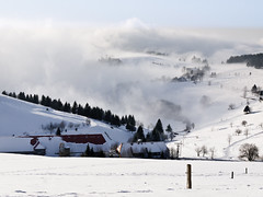 Valley of Fog (andywon) Tags: trees houses mist nature fog germany landscape deutschland path valley schwarzwald blackforest schauinsland badenwrttemberg giesshbel stohren gettyimagesgermanyq1