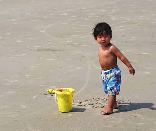 beach hilton head 16