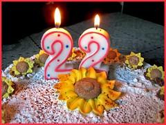 june 8th 2007. (*northern star) Tags: birthday cake canon 22 candles flames sunflowers happybirthday bday compleanno torta cioccolato nocciola auguri candele buoncompleanno cacao happybirthdaytome northernstar candeline 22yearsold donotsteal allrightsreserved millefoglie fiammelle northernstarandthewhiterabbit northernstar usewithoutpermissionisillegal northernstarphotography ifyouwannatakeitforpersonalusesnotcommercialusesjustask
