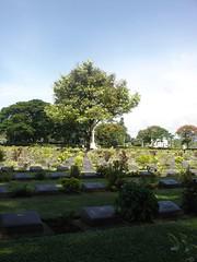 War cemetery (anuradhac) Tags: thailand kanchanaburi kwai