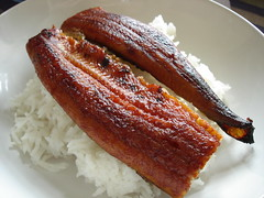 Japanese Eel on Rice - by su-lin