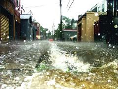alley flo (Urban Hippie Science) Tags: storm water rain alley day rainyday baltimore drain alleyway rainstorm thunderstorm showers geotag thunder stormdrain drainage 雨 charlesvillage