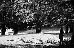 una bimba nel bosco (Geomangio) Tags: y u flavia monti bosco livata noaitagligelmini nogelminiday
