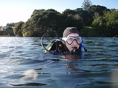 PADI Open Water Dive