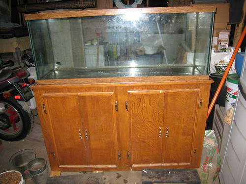 Complete 55 Gallon Aquarium + Stand for sale