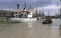 "R19 May 83 neg 6 ""WERNER SEELENBINDER"" (Scouse Hobbit) Tags: liverpool docks ship tug"