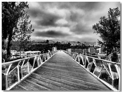 Coimbra_Ponte_pedonal (vmribeiro.net) Tags: portugal geotagged ponte coimbra i500 pedonal abigfave 215ininterestingnesson20070924 geo:lat=40200789 geo:lon=8428262
