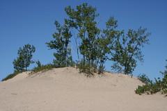 IMG_2009 (lp.proulx) Tags: family camping summer sandbanks